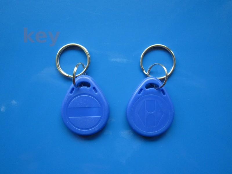 Cartela interfon EM 4305 ID13 albastru